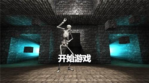 骷髅重生生存射击3D截图2