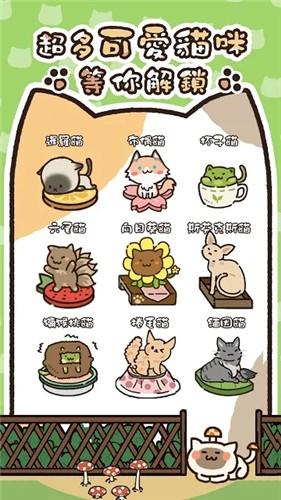 猫咪庭院物语最新版截图3