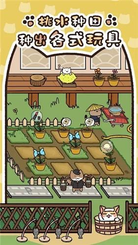 猫咪庭院物语最新版截图4