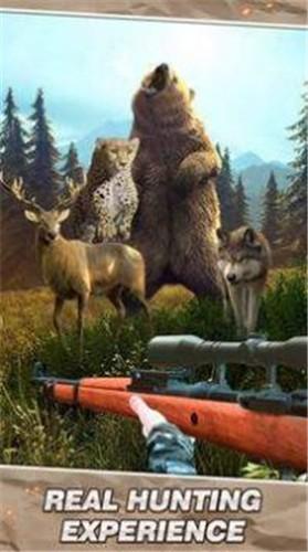 野生生存狩猎截图0