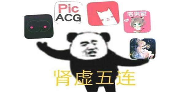 肾虚五连app下载