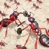 进击的蚂蚁