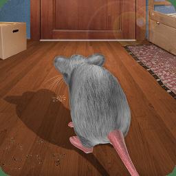 老鼠在家模拟3D无广告版