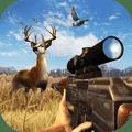 3D丛林狩猎