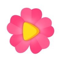 紫罗兰直播iOS版