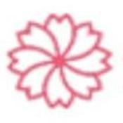 米粒米粒新版樱花