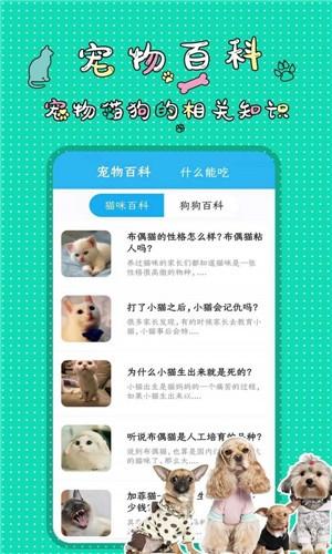 人猫人狗翻译交流器截图2