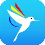 蜂鸟影院app